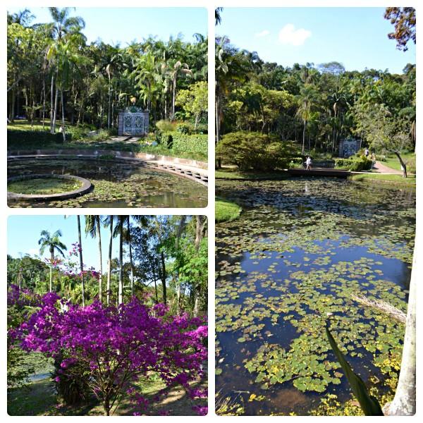 jd botanico parque sp