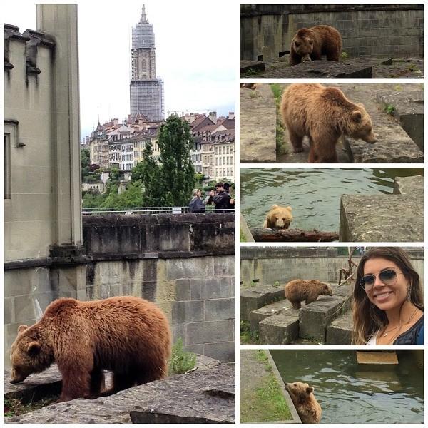 parque dos ursos berna