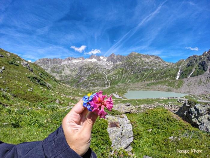 que epoca viajar para a suica