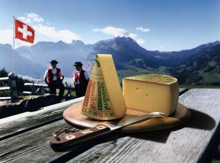 queijos suiços